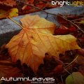 BrightLight_Music_-_AutumnLeaves_mixed_by_KevinMa_(November_2010)